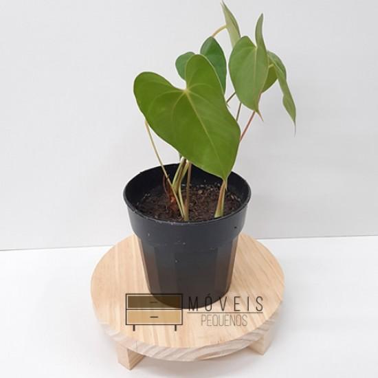 Suporte redondo para Plantas madeira